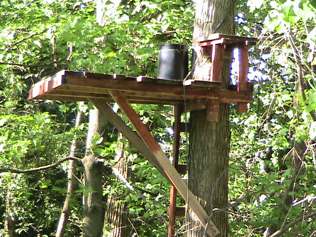 Homemade wood tree stand plans woodproject for Diy deer stand plans