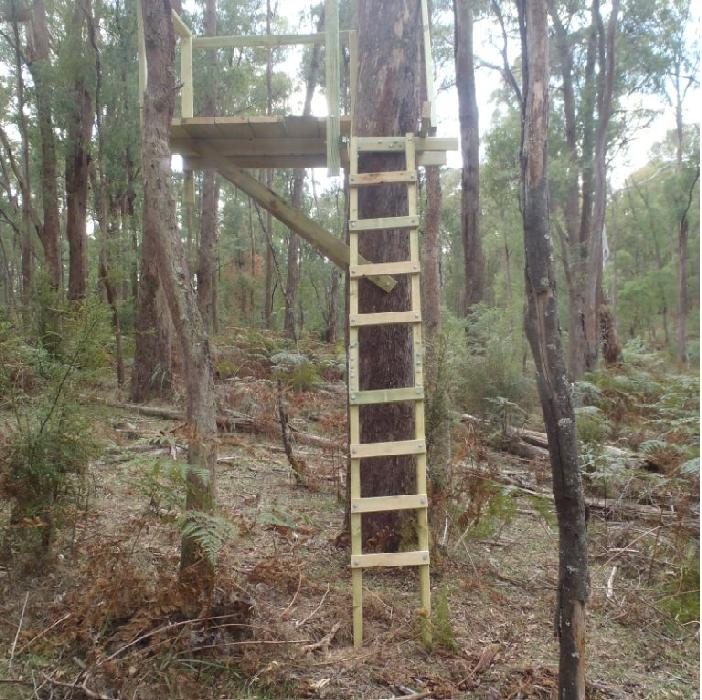 Pdf tree stand plans plans free for Diy deer blind