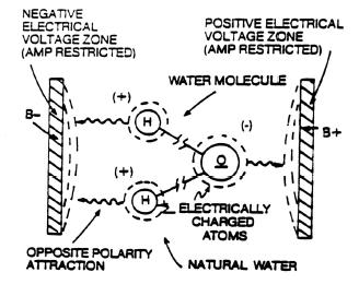 Electrical Polarization of the water molecule